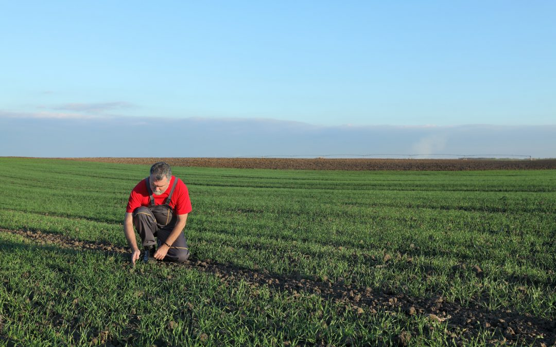 Ergonomia in agricoltura